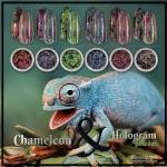 ผง Chameleon เกร็ดหยาบ ผสมผง Hologram เกร็ดละเอียด ชุด6สี Chameleon & Hologram Powder