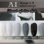 สีเจล AI ชุด Trend of the ash มี 6ขวด โทนสีขาว เทา ดำ พร้อมแถมกรอบรูปในชุด