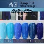 สีเจล AI ชุด Senior Blue มี 6ขวด โทนสีฟ้าและน้ำเงิน พร้อมแถมกรอบรูปในชุด