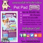 แผ่นรองซับฉี่สุนัข BokDok : AS75