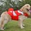 เสื้อชูชีพสุนัขแบบแฟนซี : ชุดนีโม thumbnail 6