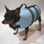 เสื้อชูชีพสุนัขแบบโฟมรอบตัว เบอร์ S thumbnail 9