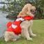 เสื้อชูชีพสุนัขแบบแฟนซี : ชุดนีโม thumbnail 5