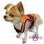 เสื้อชูชีพสุนัขแบบเสื้อกล้าม เบอร์ 3 thumbnail 5