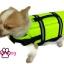 เสื้อชูชีพสุนัข Dogtalog แบบมีรองคอถอดได้ : สีเขียว thumbnail 5